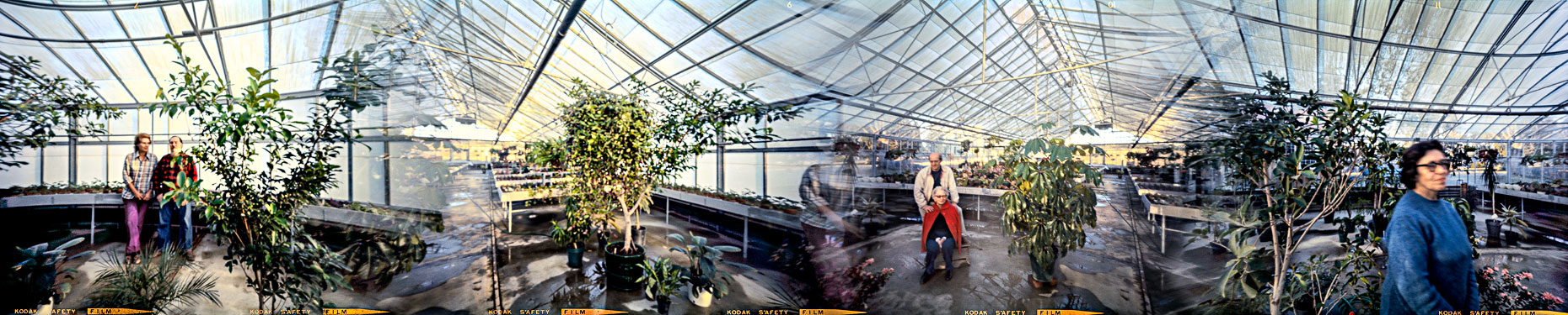 19_TobysGreenhouse_Millbrook_1973