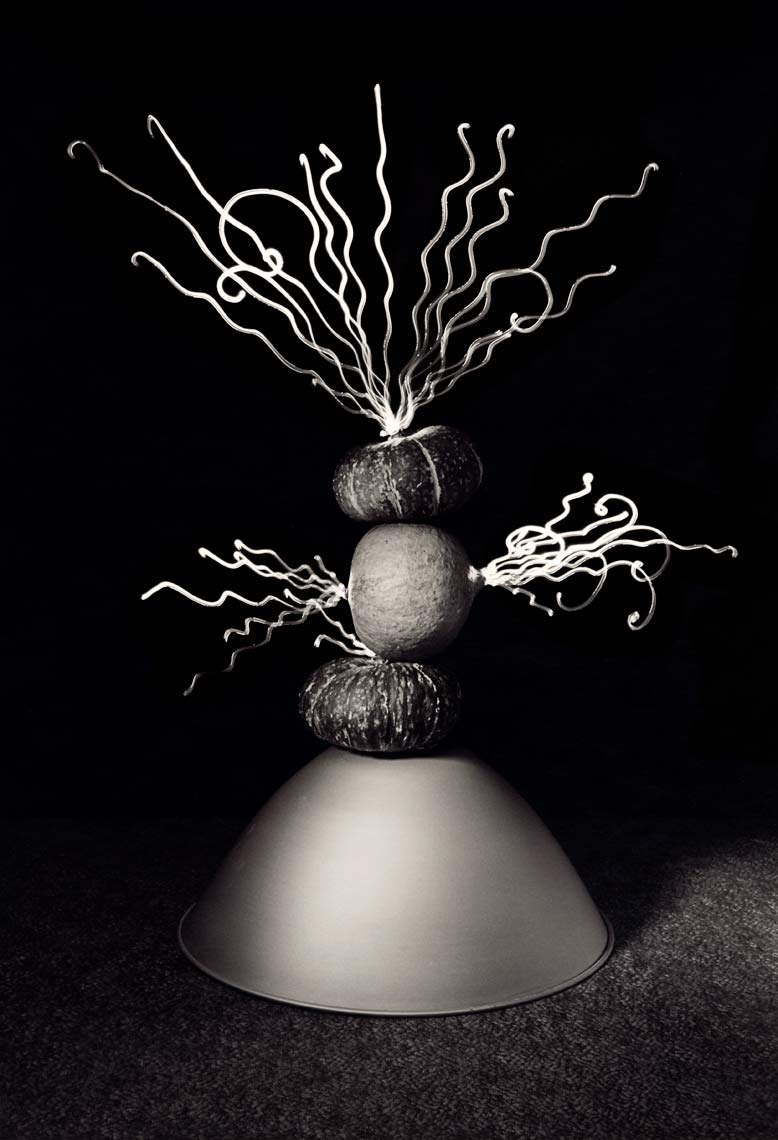 David Lebe; Food For Thought 13, 1992, light drawing, black and white photograph