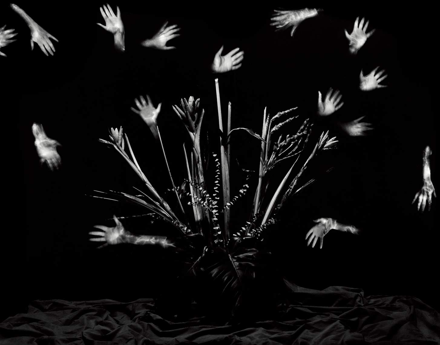 David Lebe; Hands, 1989, light drawing, black and white photograph