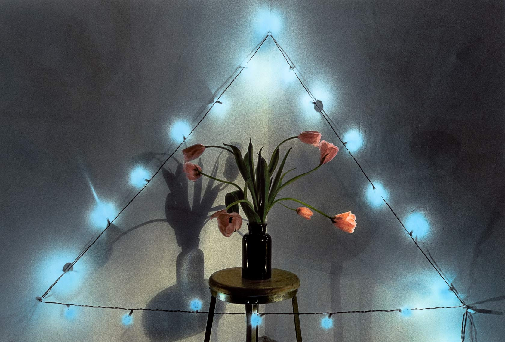 David Lebe; Pink Tulips Blue Lights, 1982, still life, hand colored photograph
