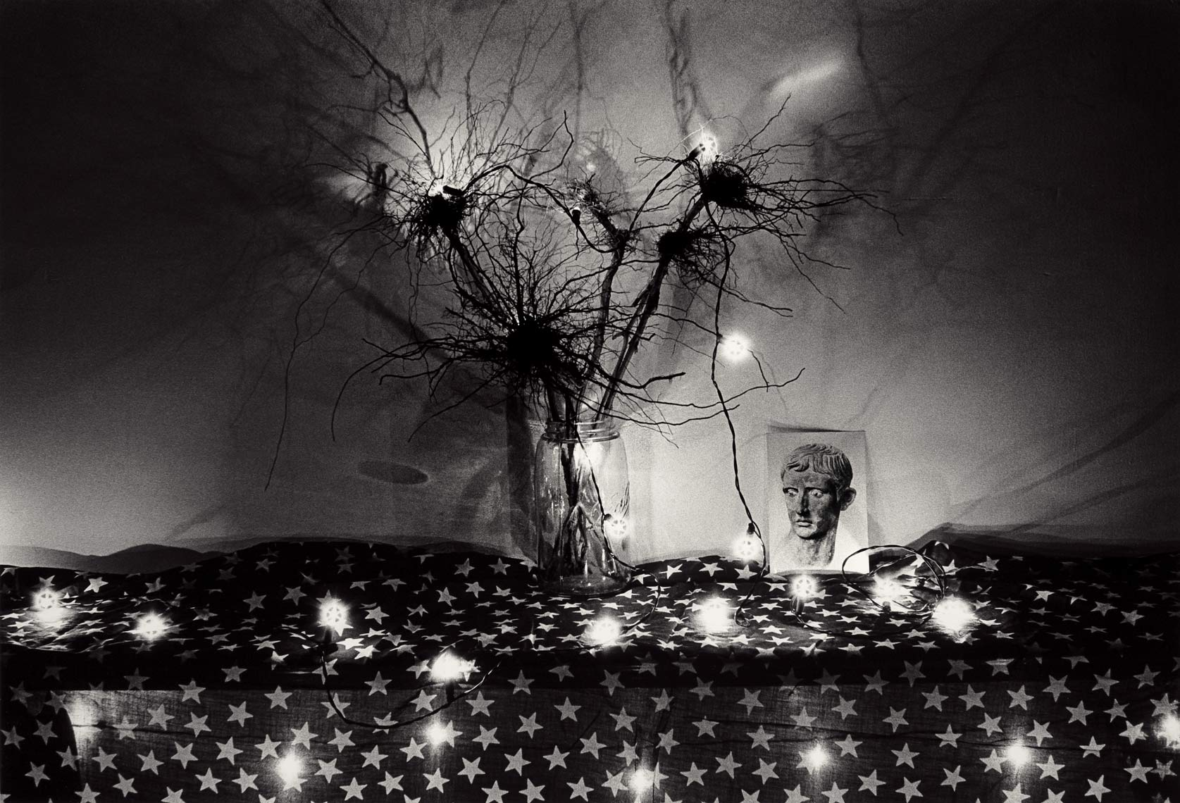 David Lebe; Roots, 1982, black and white photograph