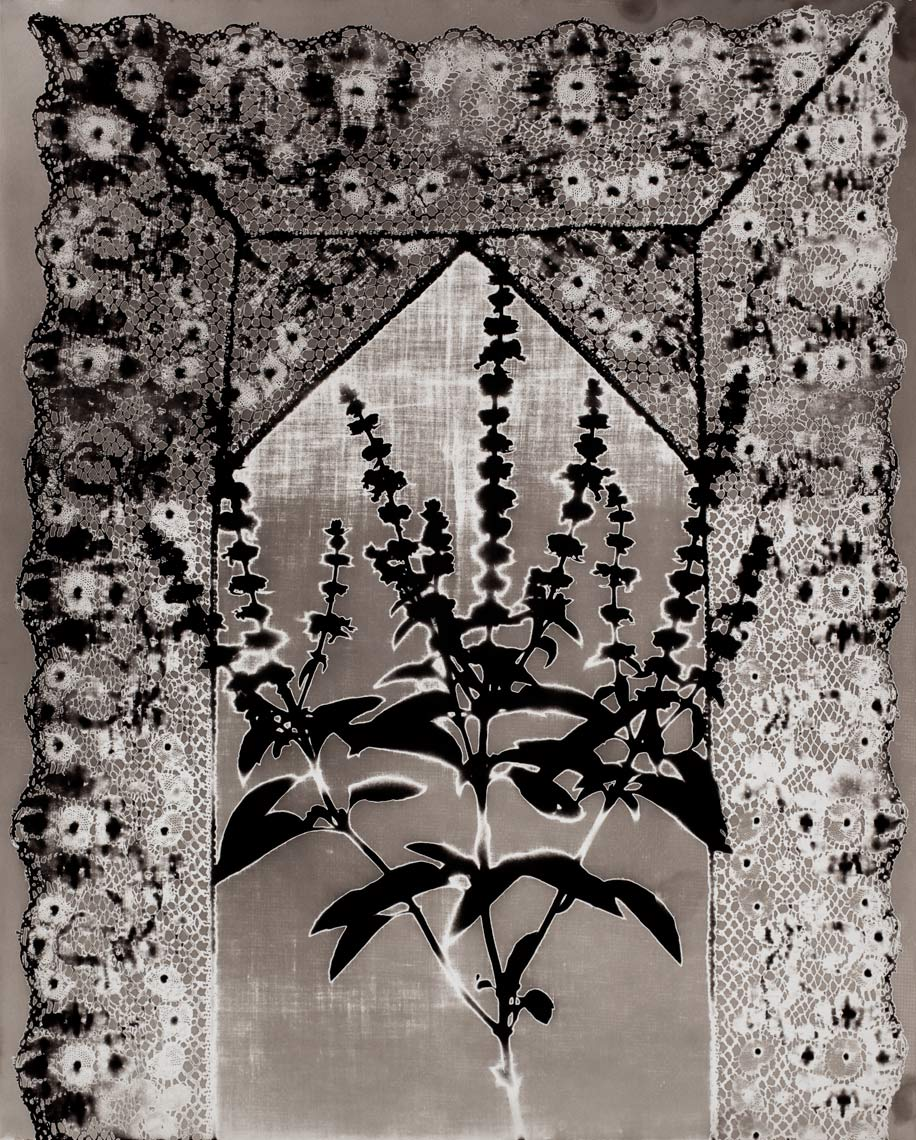 David Lebe; Specimen 16, 1979, black and white photogram